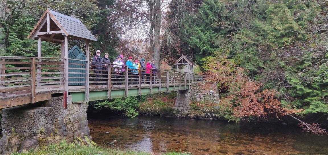 Group on wooden bridge