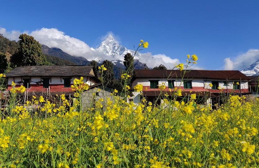 Gurung village under Fishtail Mountain in Nepal