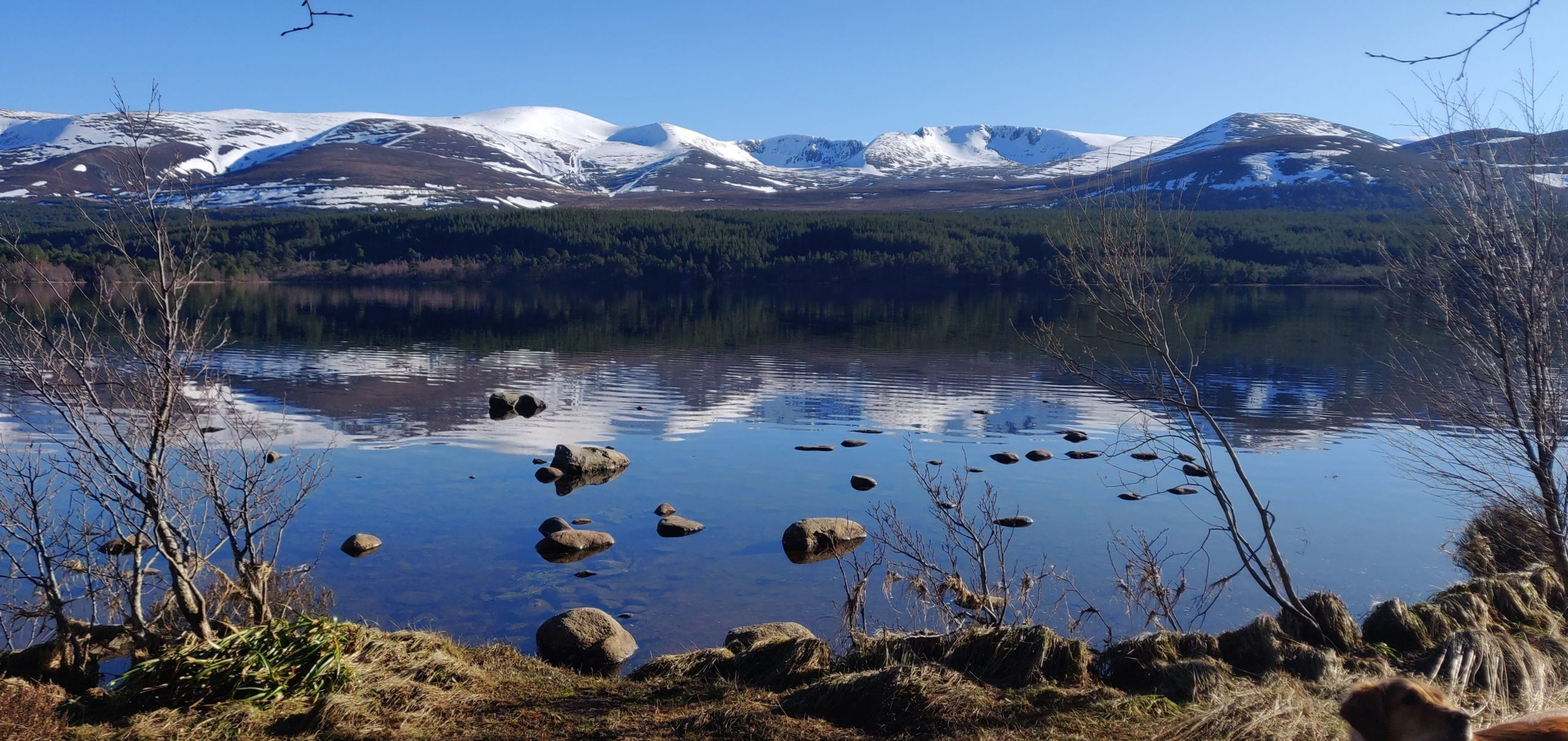 View across Loch Morlich to the Cairngorms